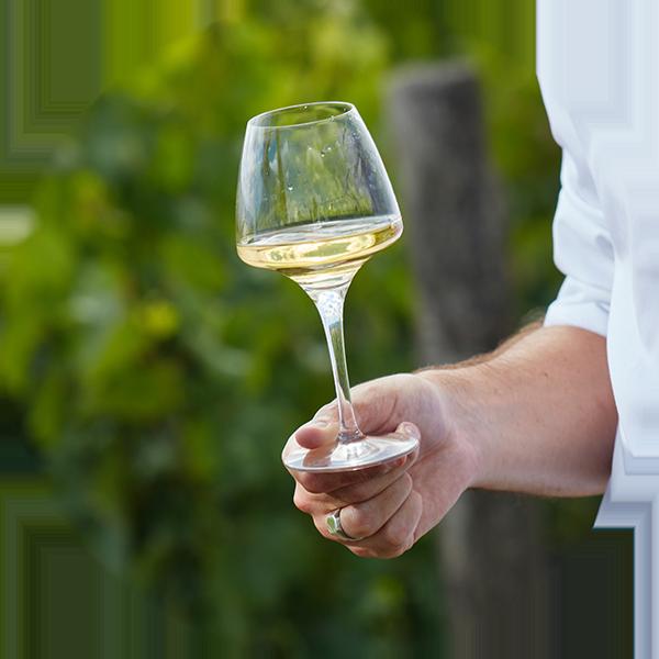 Photographe de vins et spiritueux : dégustation de Jasnières